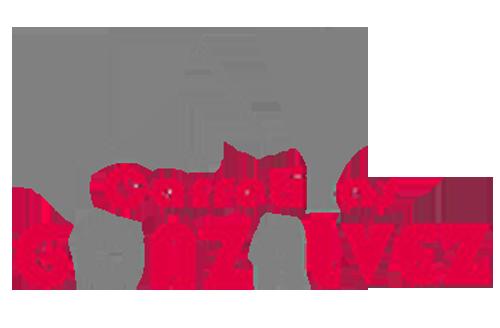 Carretillas Gonzálvez